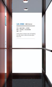 LG-V003